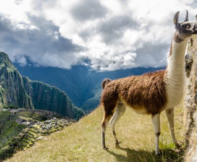 2-Day Excursion to MACHU PICCHU